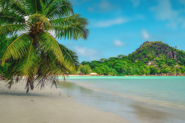 Les Seychelles attaquent Paris-Plage en Justice pour concurrence déloyale